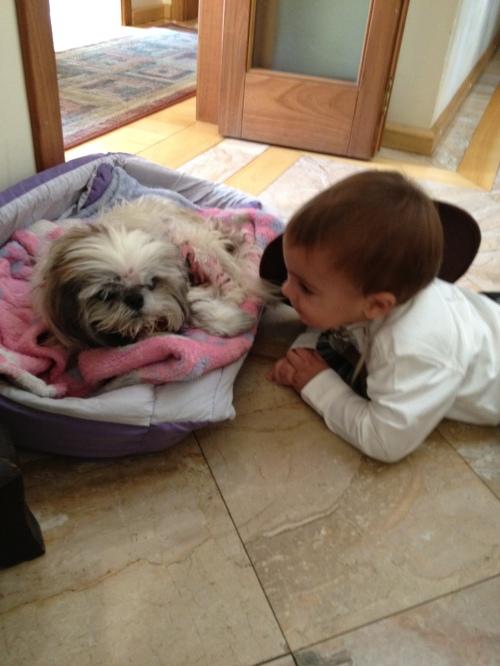 Conversando com a prima Dotty